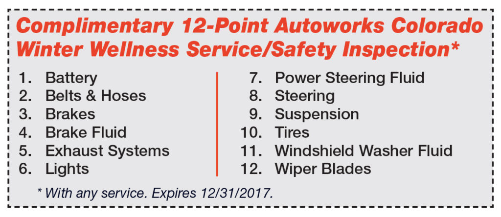 12 point safety inspection graphic